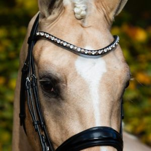 Swarovski Browband Bridle2Fit