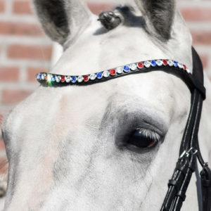 USA swarovski browband